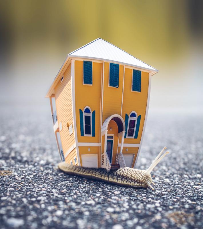 Maison sur le dos d'un escargot